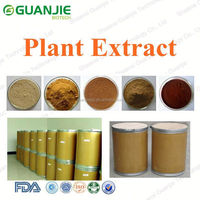 High Quality papain enzyme