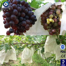 OEM Disposable Nonwoven Fruit Protection Bag For Grape