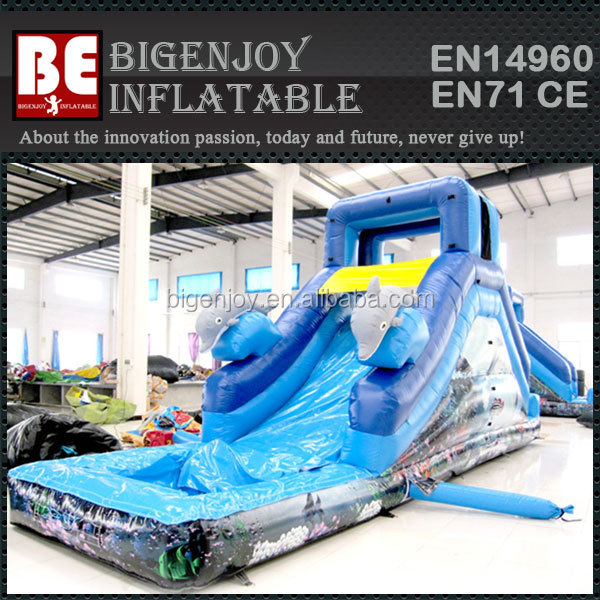 Dolphin Small Single Lane Inflatable Water Slide for backyard
