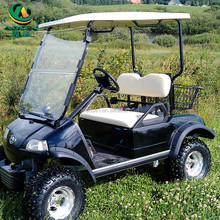 Wholesale 250cc Cheap 2 Seats Gas Powered Golf Cart /Popular Gas Cars for Sale