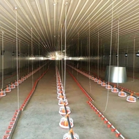 Poultry Farm Equipment For Breeder Layer