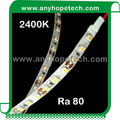 48watt per roll high bright 12v led waterproof rope light