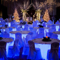 16kinds changing colorful led light for wedding decoration materials