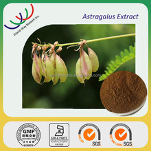 Hot sales Chinese herb medicine high quality 50% polysaccharides Astragalus extract astragalus membranaceus bge.