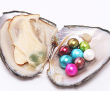 Wholesale 10-11 mm Big Size Pearl in Freshwater Oyster Vacuum-Packed Fancy Gifts for Girls Different Colors