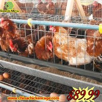 China factory 5 layers bird cage chicken for wholesales
