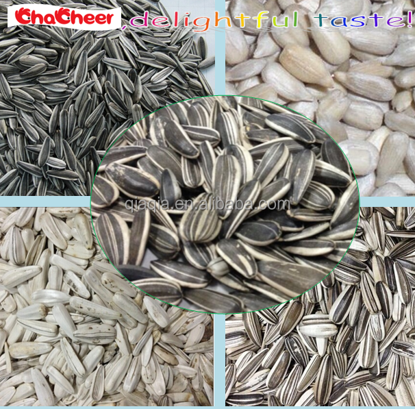Different types of sunflower seeds