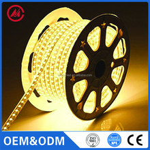 CE Customizable CHIP Price 5050 DOUBLE PCB 220V flexible RGB outdoor wireness waterproof led strip light