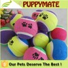 Wholesale Mixed Colors Pet Ball Dog Products Cat Toy Pet Tennis Balls Fetch Throw Chew Dog Balls Toys