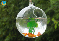 rope clear glass tank for garden decors birthday gifts