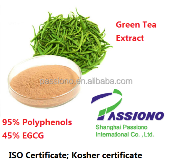 100% pure natural Green Tea Extract 98% polyphenols 45%EGCE