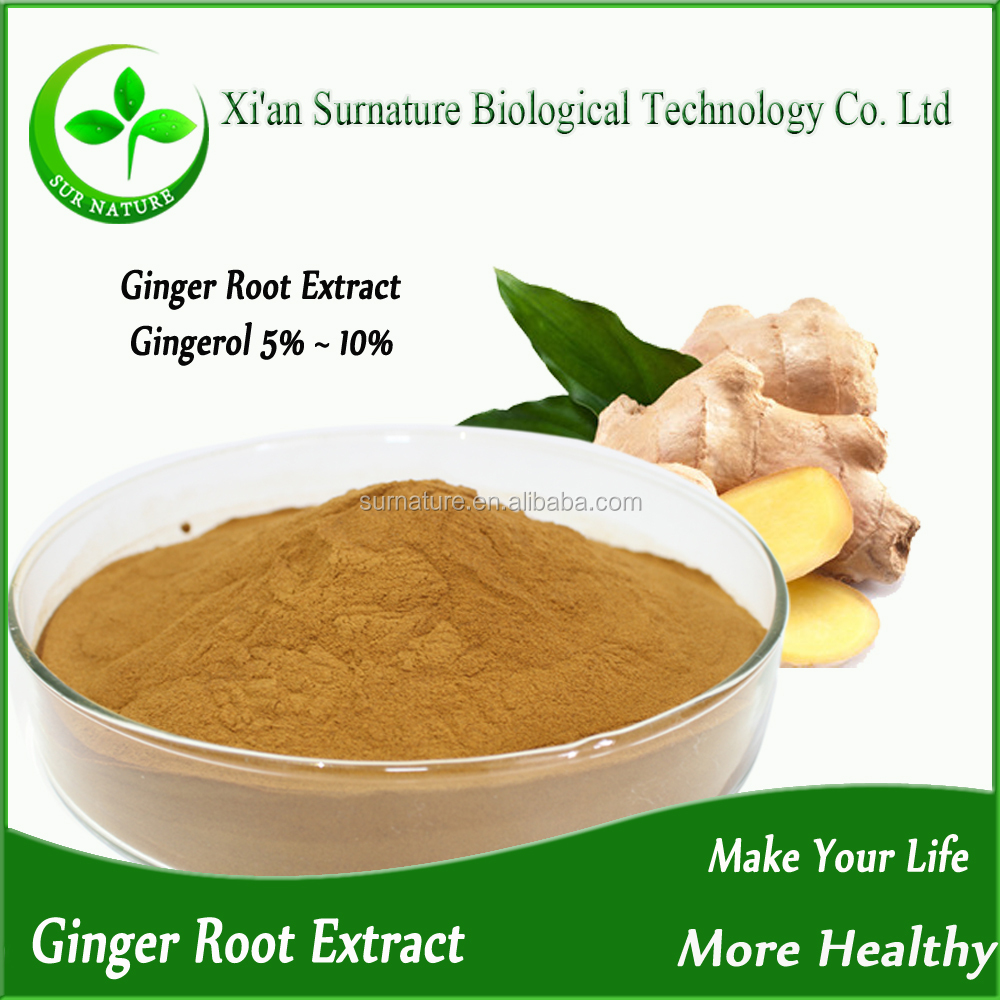Manufacturer Pure ginger extract powder water soluble/ginger root extract