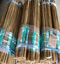 Wy-L547 Gardening Bamboo Cane,Tonkin Bamboo Poles Cheap Bamboo Stakes Wholesale