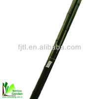 Bamboo raw materials/ colored artificial lucky bamboo