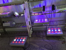 High Power 720W Full Spectrum LED Grow Light for Greenhouse