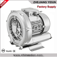 portable 110V/230V 11kpa votex vacuum pump