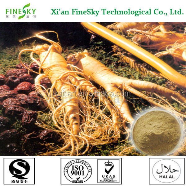 Chinese Ginseng Extract Powder,Herbal Red Panax Ginseng
