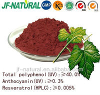 Grape leaf extract GMP manufacturer