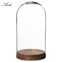 Decorative Glass Dome With Wooden Base