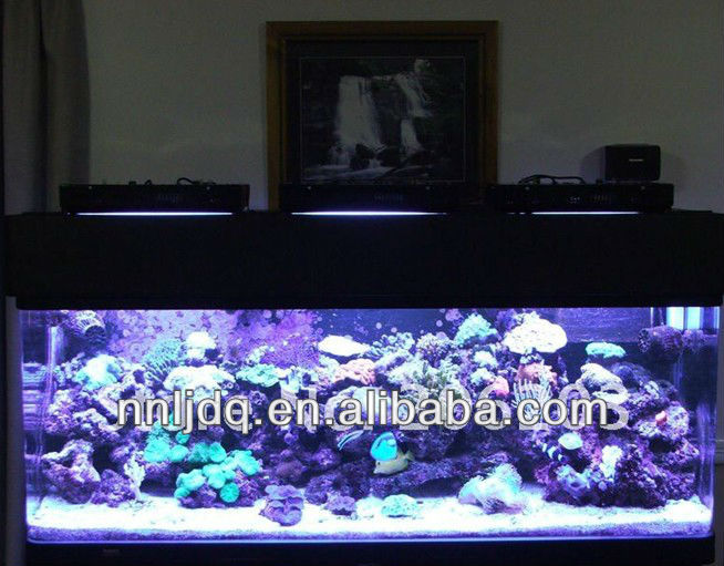 Dimmable Marine 120W Bridgelux diy led aquarium lights coral reef tank 3W Chip blue &white for freshwater fish tank