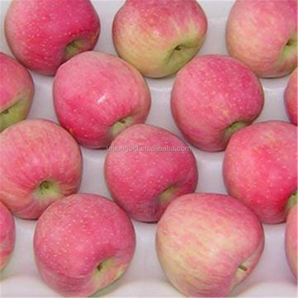 2015 new crop fresh red star apples fruit