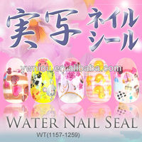 WT-1 Nail Art Decal water slide nail decals