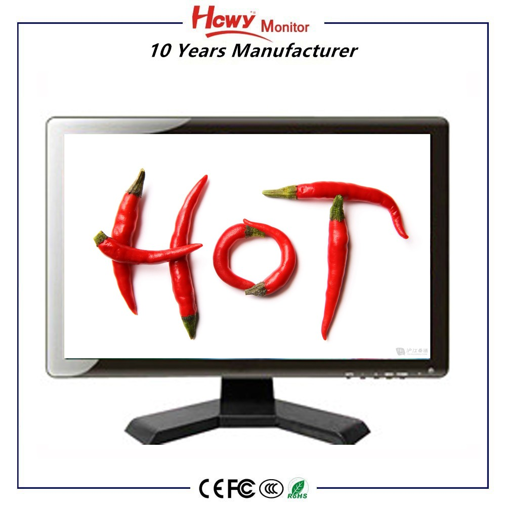 Low Price 17 inch Widescreen LCD Monitor With High Brightness