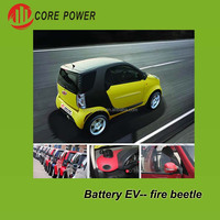 EV Electric Car for sale