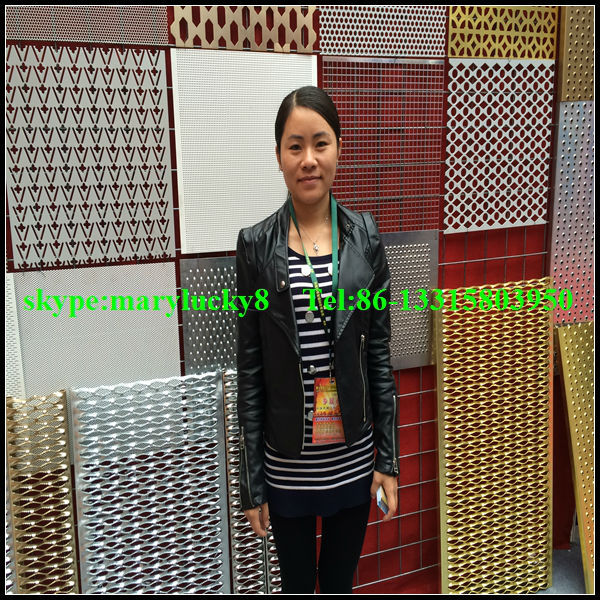 decorative perforated sheet metal panel/Decorative sheet metal door panels