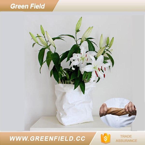 Green Field handmade washable paper flower pot