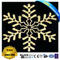 wire frame christmas led light motif