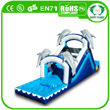 HI CE durable and exciting largest inflatable water slide,inflatable slide with pool