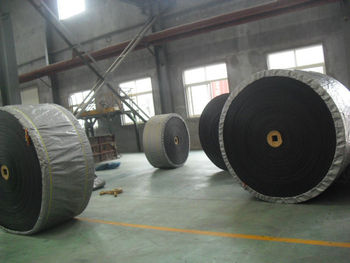 Professional Manufacturer of Conveyor Belt