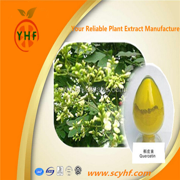 High quality pharmaceutical grade quercetin plant extract
