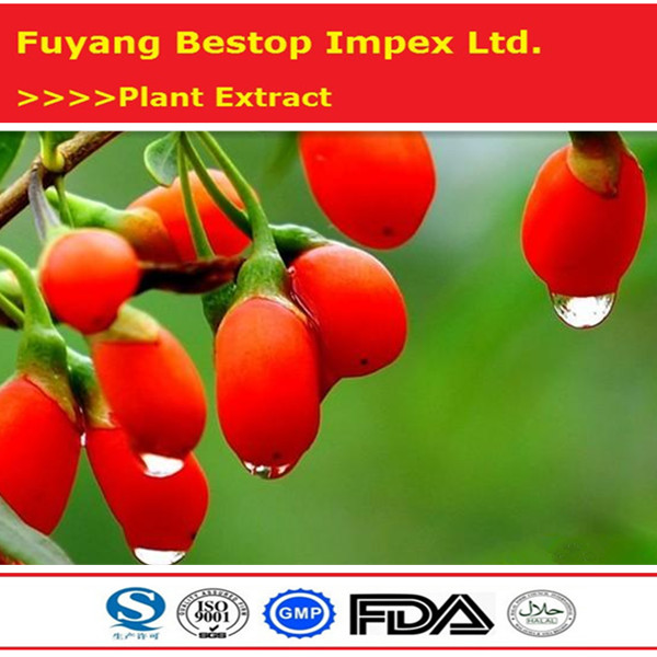 Gou qi 100% Natural pure wolfberry extract Organic Goji Berry Extract