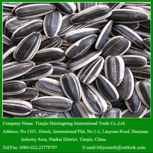 Hot Sell 2016 New crop Sunflower seeds kernels with Best Quality