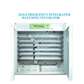 Best Selling 10000 Poultry Hatchery with Spring Promotional Price