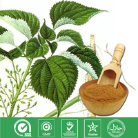 100% Natural Nettle Root Extract powder