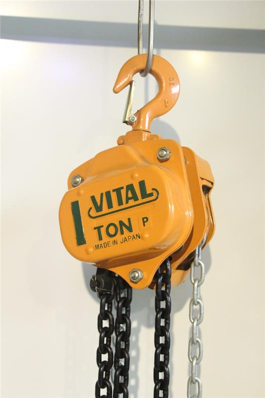 New coming fast speed 500kg motor lifting hoist with top quality