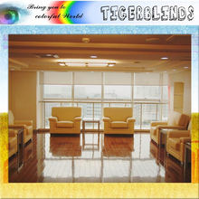 Newest sale modern style OEM quality office window roller blinds