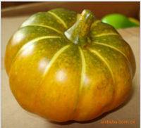 White decorative large plastic pumpkins