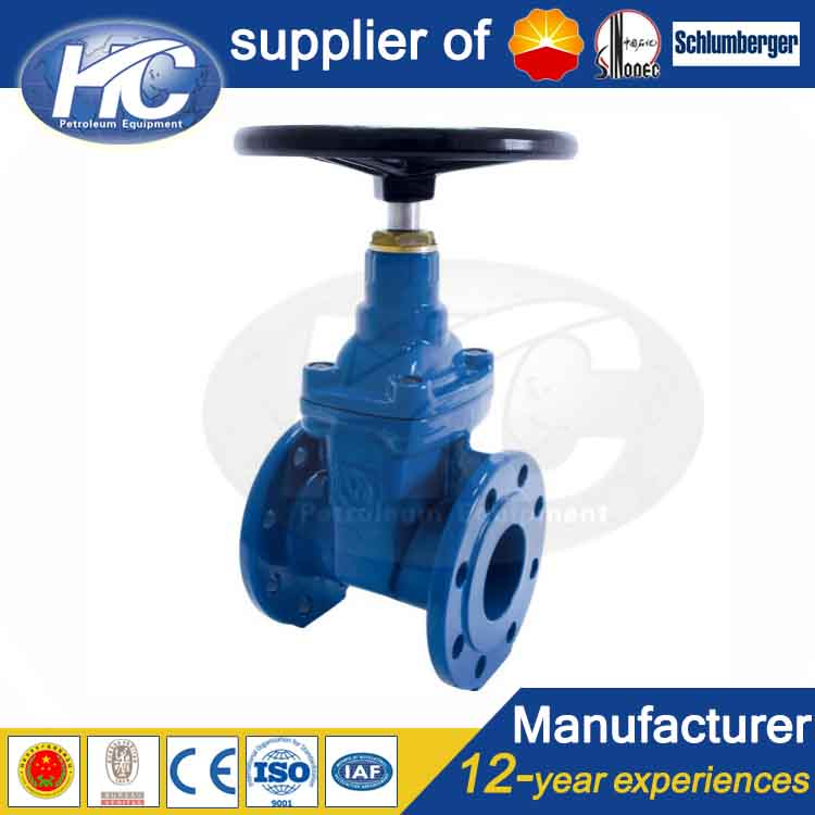 High pressure anti-corrosion flange connection end gate valve / non-rising stem gate valves