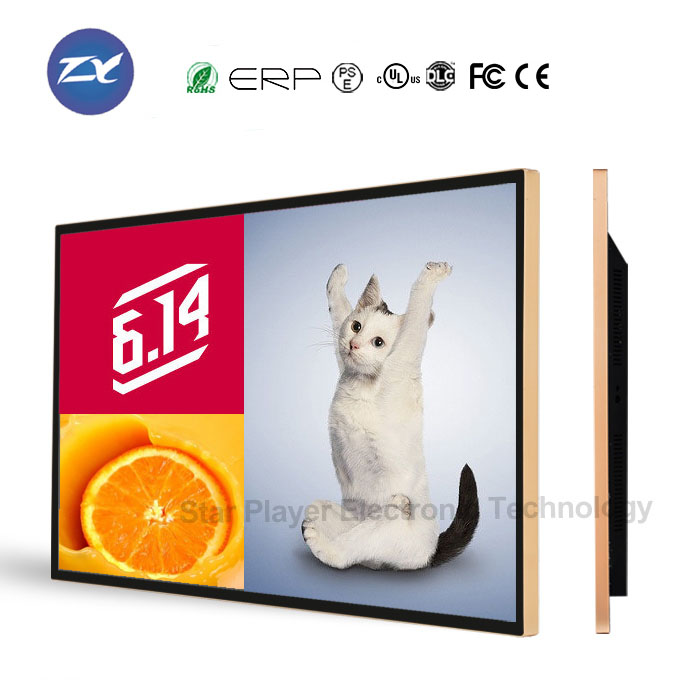 42 inch wall LCD monitor electronic product <strong>advertising</strong>