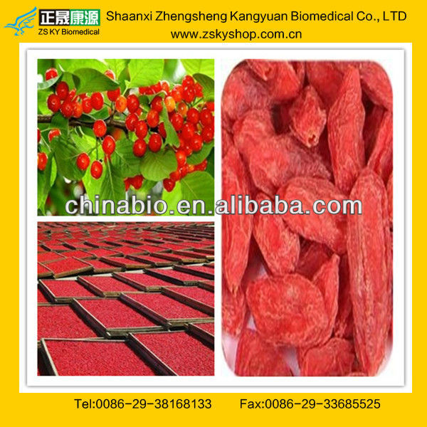Top Quality Dried Goji Berries