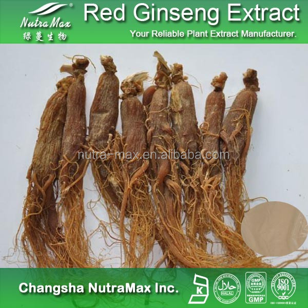 100% Pure Korean Ginseng/Red Ginseng Extract/Panax ginseng with 80% Ginsenosides