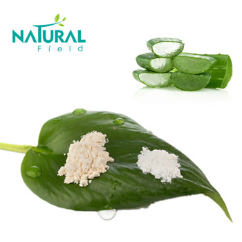 ISO Certificated pure aloe vera gel freeze dried powder manufacturer