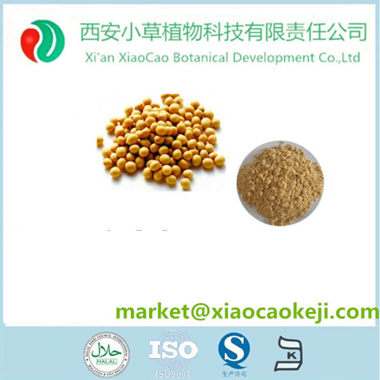 Soybean Extract 50% 80% Phosphatidylcholine/CAS 8002-43-5