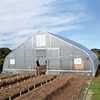 PE Plastic Large Tunnel Greenhouse For
