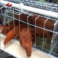 Folding Chicken Laying Cage Cheap Sale