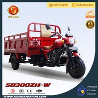 Chinese Popular New Style 300CC Air Cooled Gasoline Powered Tricycles 3 Wheel Motorcycle SD300ZH-W